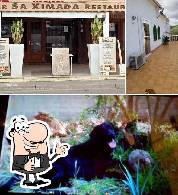 """Здесь можно посмотреть изображение ресторана """"Sa Ximada"""""""