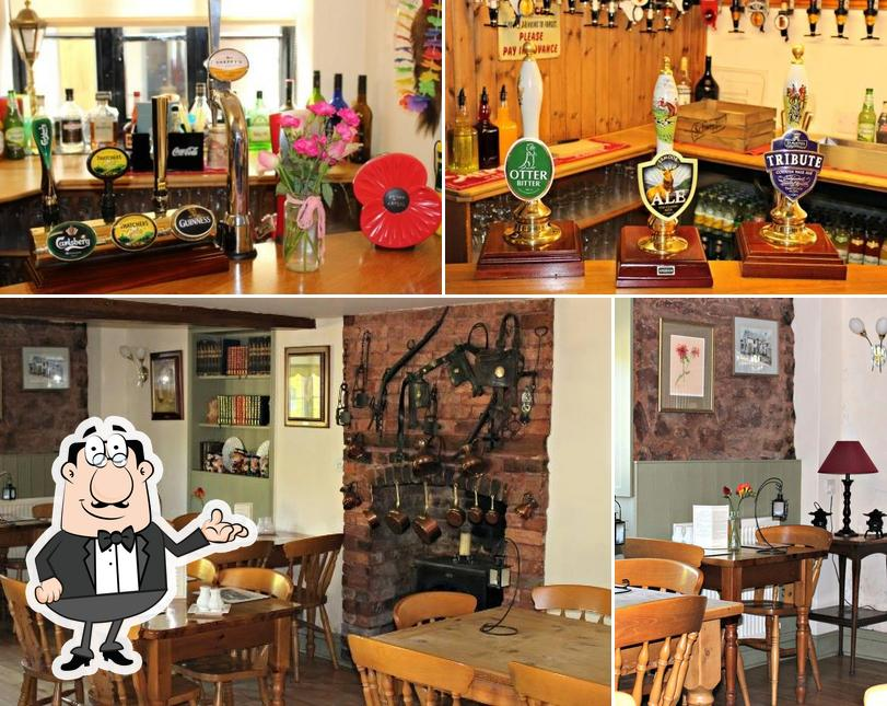 Among various things one can find interior and drink at Martlet Inn