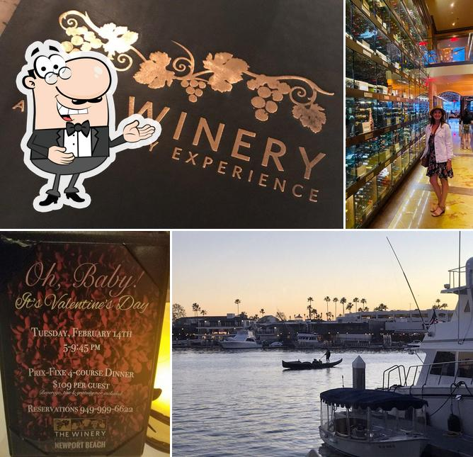 Look at this photo of The Winery Restaurant Newport Beach